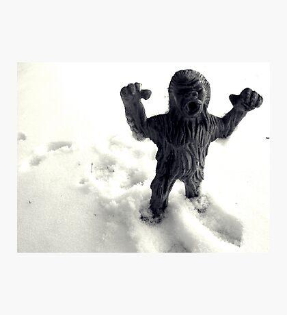 02-08-2011 Winter Threatens aka YETI ATACK!!!! Photographic Print