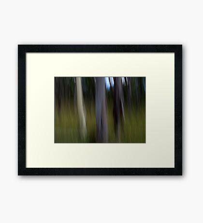 The Elders Framed Print