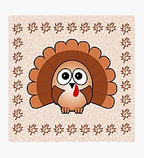 Little Cute Turkey Photographic Print
