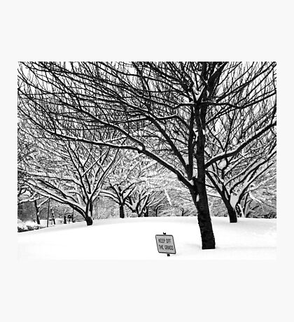 snowy winter day, bronx, new york city Photographic Print