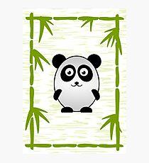 Little Cute Panda Photographic Print