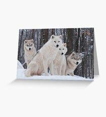 Arctic Wolf Pack Grußkarte