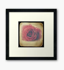 Love through the viewfinder Framed Print