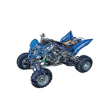 Yamaha Raptor 700 R Cut Out by customkitz