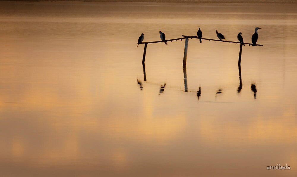 On Golden Pond by annibels