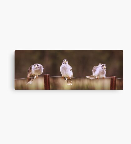 Don't worry 'bout a thing.... Canvas Print