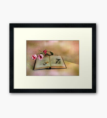 Broken Dreams ! Framed Print