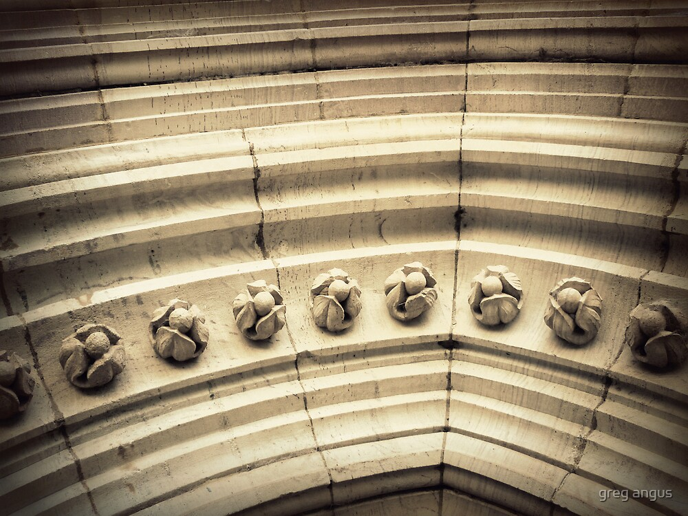 stone buds by greg angus