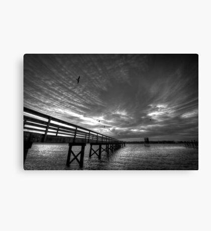 Bird Night at the Dock Canvas Print