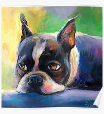 Boston Terrier pensive Dog painting Svetlana Novikova Poster