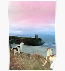 winter beach and castle view with dogs Poster