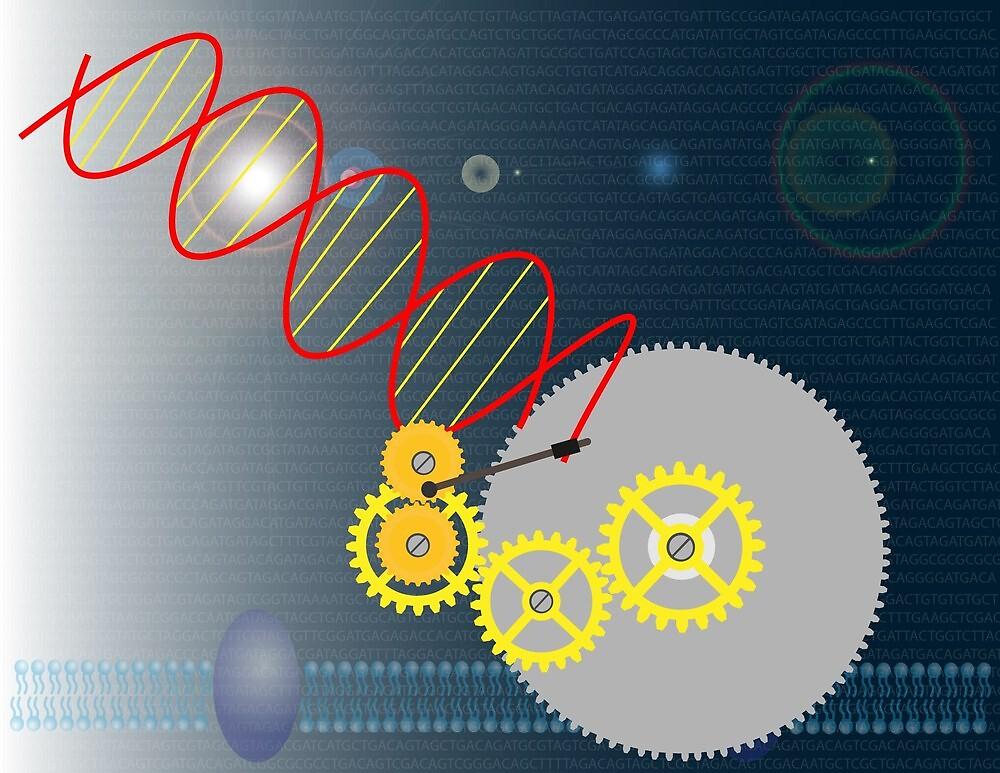 Genetic engineering by Meletios Verras