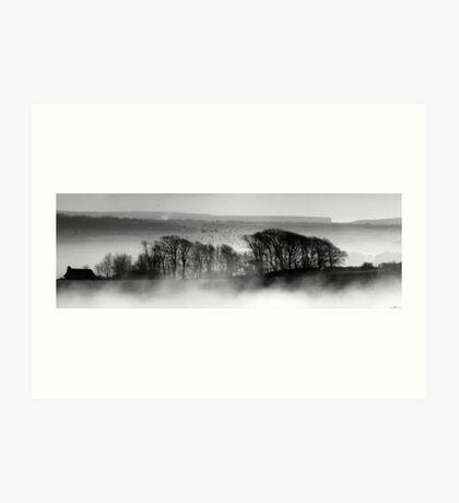 Trees above the Mist Art Print