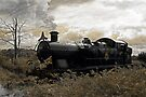 Steam Train at Cranmore station, Shepton Mallet, Somerset, UK  by David Carton