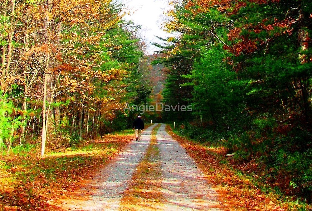 Strolling Into Autumn by AngieDavies