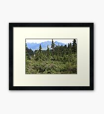 There May Be Trolls 10 Framed Print