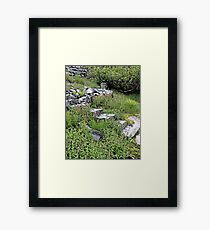 There May Be Trolls 13 Framed Print