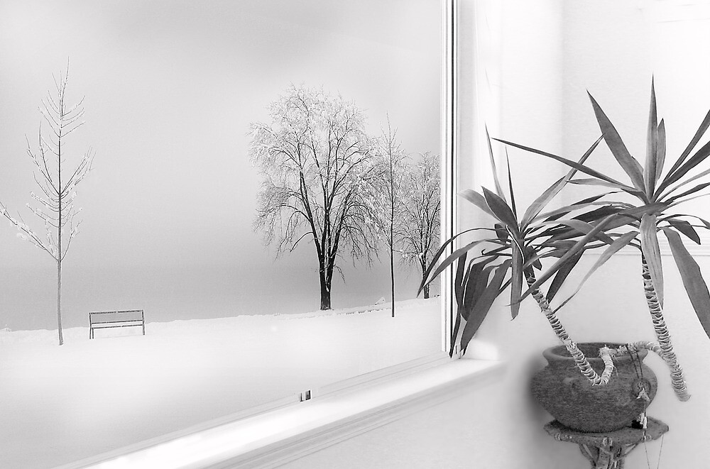 Inside Looking Out (bw) by John Poon