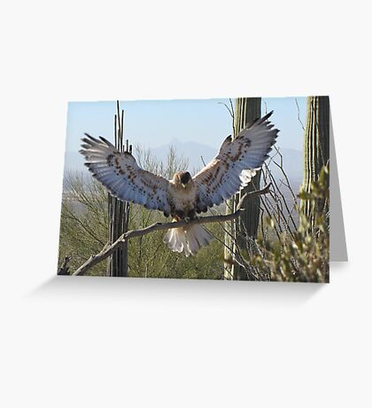 Ferruginous Hawk ~ It's Good!!!! Greeting Card