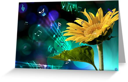 A Garden Symphony by Linda Lees