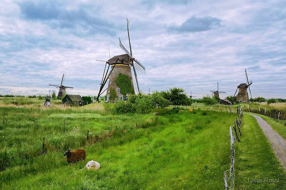 The Windmills of My Mind by Lanis Rossi