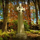 Celtic Cross in Autumn by Monica M. Scanlan