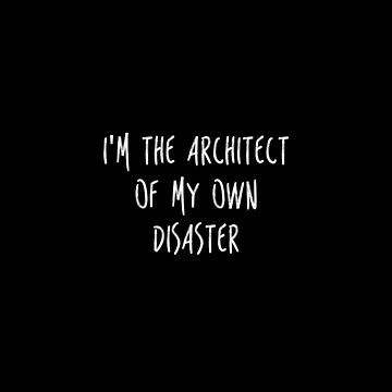 I'M THE ARCHITECT OF MY OWN DISASTER by 23connieyu