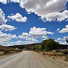 Sutherland Road by Karen01