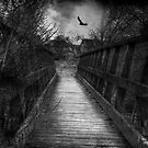 Bridge over troubled waters by Nikki Smith
