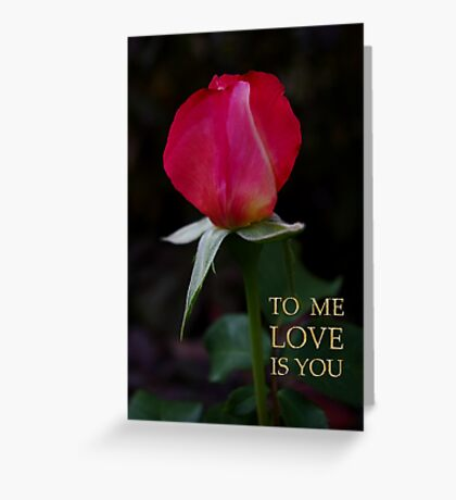 rose bud, me love you Greeting Card