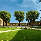The Three Trees of San Gimignano by MarcW