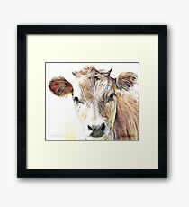 Jersey Milk Cow Framed Print
