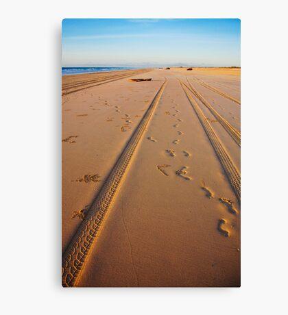 Making Tracks Canvas Print