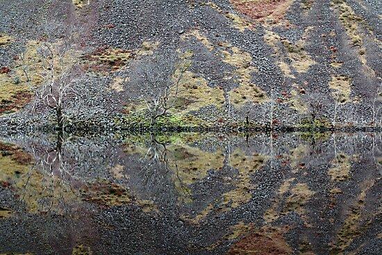 Loch Awe Symmetry by Tim Haynes