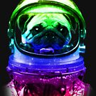Pug-Stronaut von Luke Webster