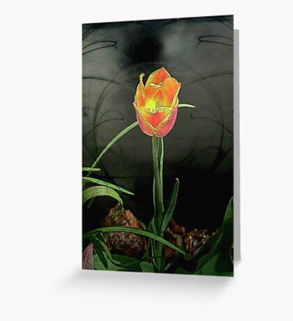 Lone Tulip © Greeting Card