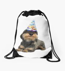 Wirehaired Dachshund Party Drawstring Bag