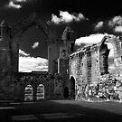 Haughmond Abbey by Paul Whittingham