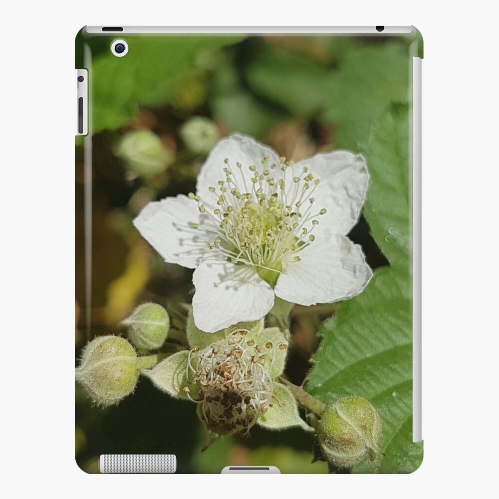 Bramble Blossom iPad Case & Skin
