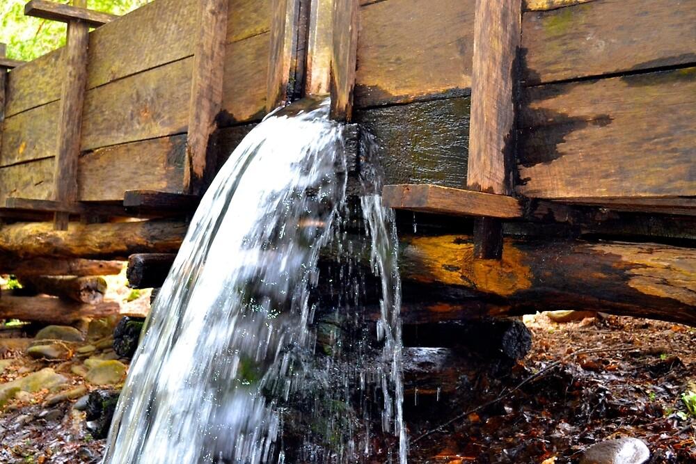 Water Leak by tylorsherrod