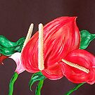 Anthurium by Sandy Wager