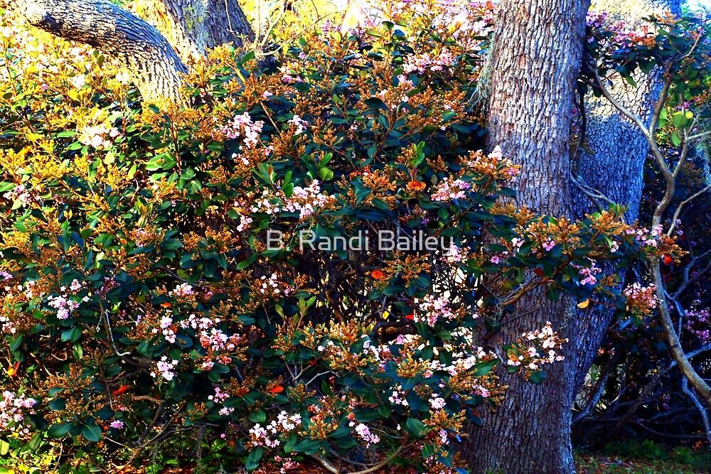 Nature's flourish by ♥⊱ B. Randi Bailey