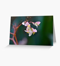 Delicate but Strong Greeting Card