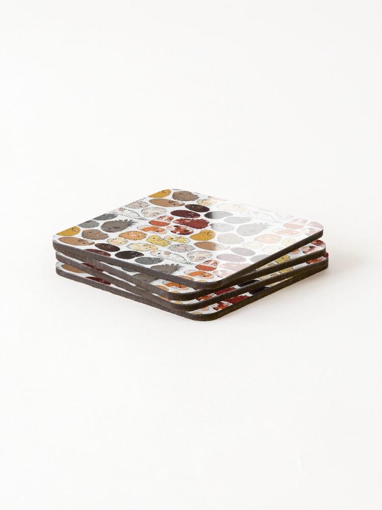 Alternate view of Guinea Pig Gradient Coasters (Set of 4)