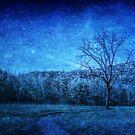 Smoky Mountain Midnight by Christine Annas