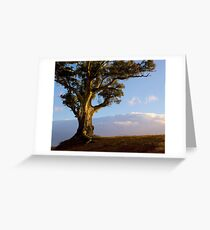 Durability and Strength, Wilpena, South Australia. Study #5 Greeting Card