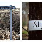 cape cod signs by lucy loomis