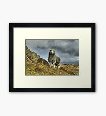 The Icon's Hissy Fit... Framed Print