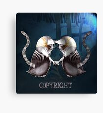Copyright and The Copycat Canvas Print