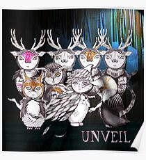 Unveil And Take A Bow Poster